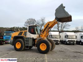 Liebherr L 556 2plus2 Super Stan  !!! - zobacz ofertę